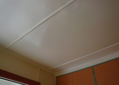 Asbestos Cement Sheeting Ceiling