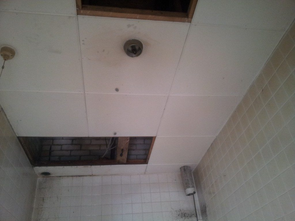 What does asbestos look like identifying asbestos and image gallery aib ceiling tiles dailygadgetfo Images